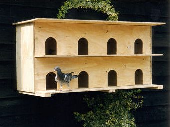 wall-mounted pigeon nesting box